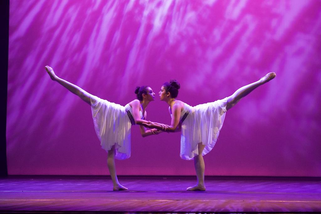 espace-danse-danse-classique-02